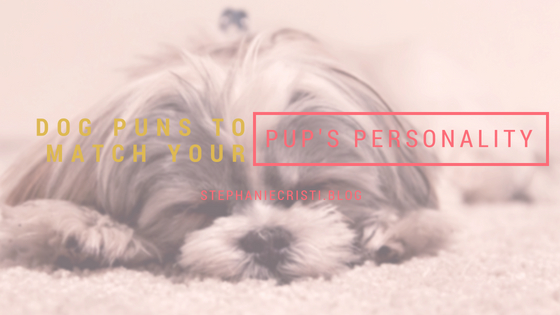 This StephanieCristi blog article inspired by the writer's new puppy lists out dog puns to be used as playful pet names.